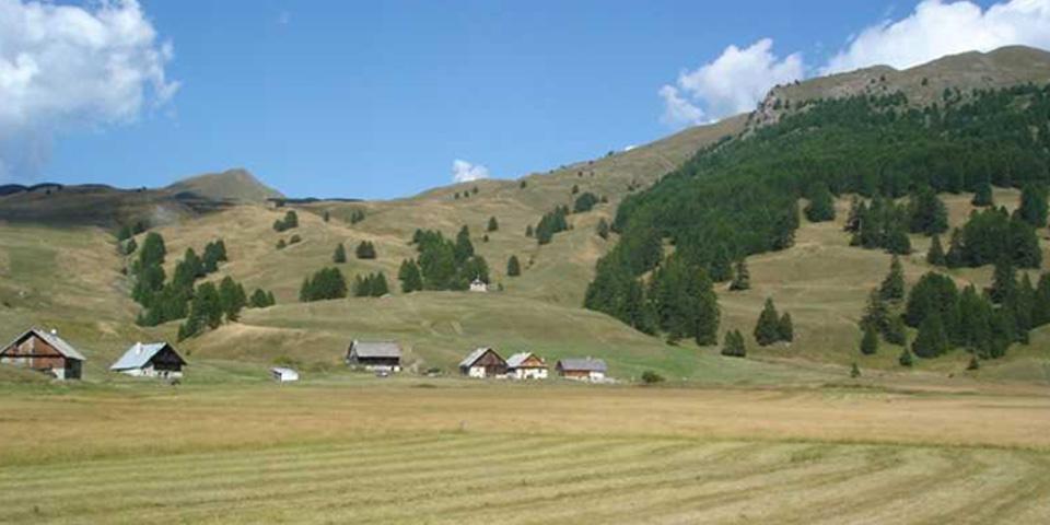 Natura2000_Fauche_Marais_du_Bourget_Cervieres