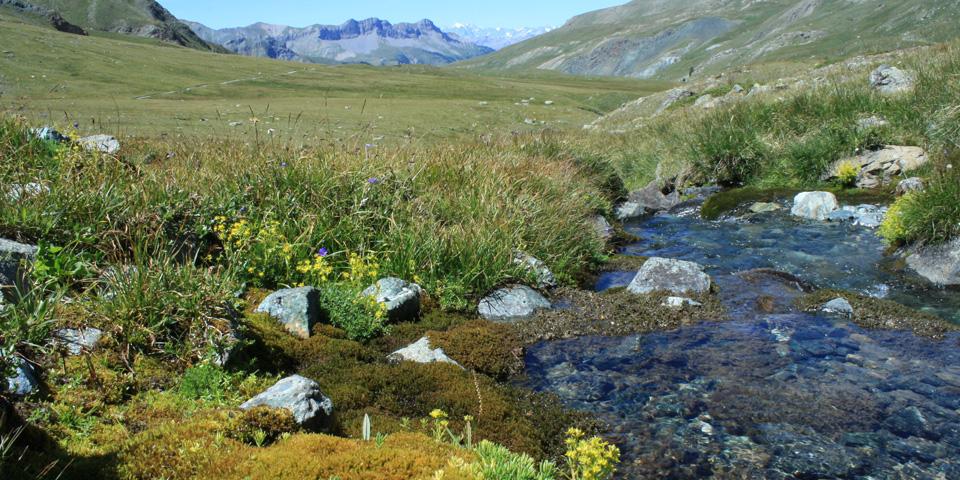 Inventaire-des-zones-humides