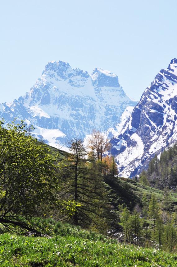 les-zones-naturelles-Mont-viso