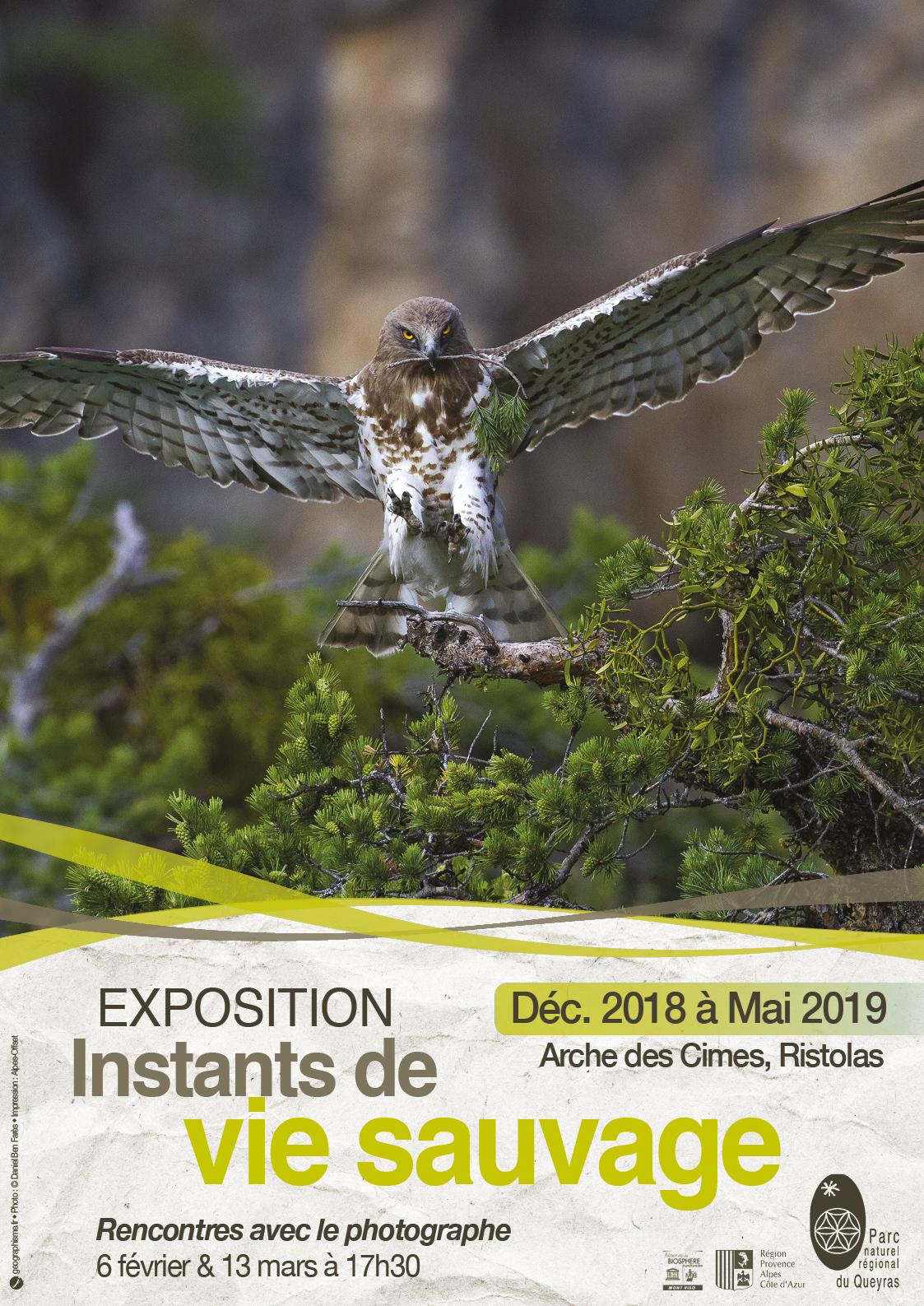 AFFICHE-Expo Arche Hiver